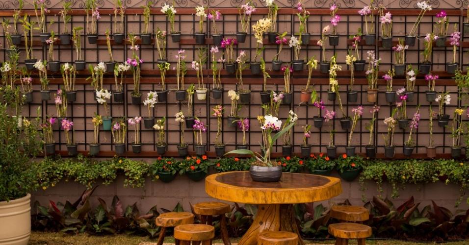 Você ama orquídeas, mas não sabe onde colocá-las em casa? Faça como a dupla de paisagistas Joacir Alves e Caroline Batista Arantes, no espaço Um pomar no Paraíso: monte um