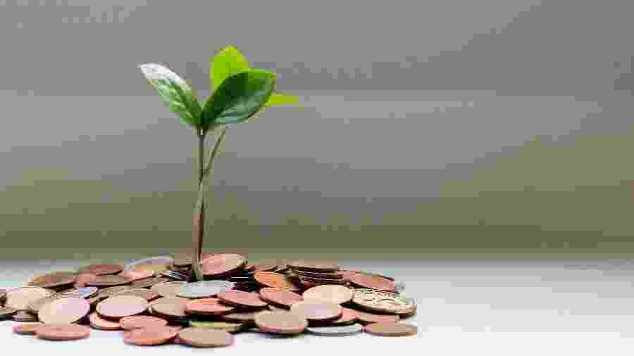A taxa de juros dos financiamentos é de 2,5% ao ano e o prazo de reembolso para a linha de capital de giro é de um ano - Micheile Henderson