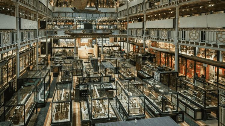 O museu Pitt Rivers tem uma coleção de cerca de 500 mil itens - PITTS RIVER MUSEUM, UNIVERSITY OF OXFORD - PITTS RIVER MUSEUM, UNIVERSITY OF OXFORD