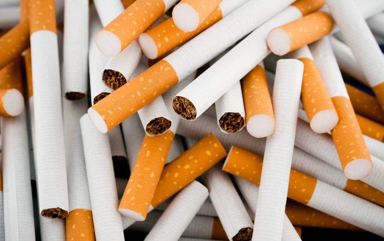 Produtores de fumo criticam projeto de combate ao tabagismo
