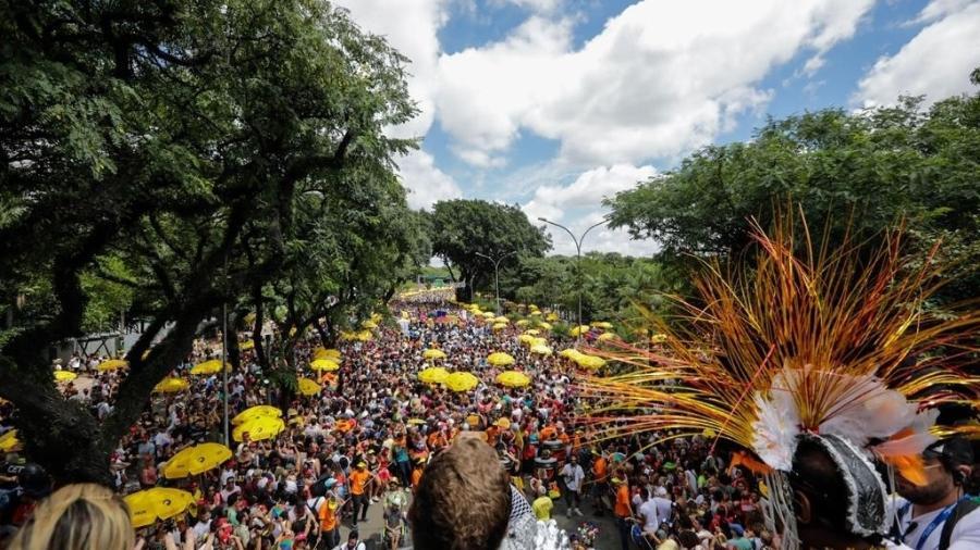 25.fev.2020 - Foliões se divertem ao som de frevos e marchinhas no Ibirapuera, em SP - Marcelo Justo/UOL