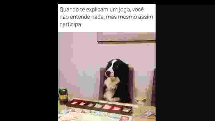 Douglas/BOL Memes