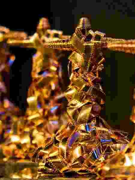 O Troféu Corcovado é um dos símbolos do Festival do Rio - Divulgação/ André Maceira