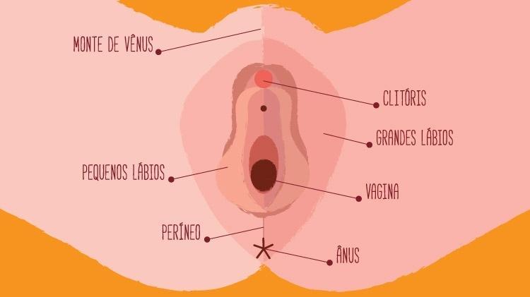 As meninas amam um pequeno pênis