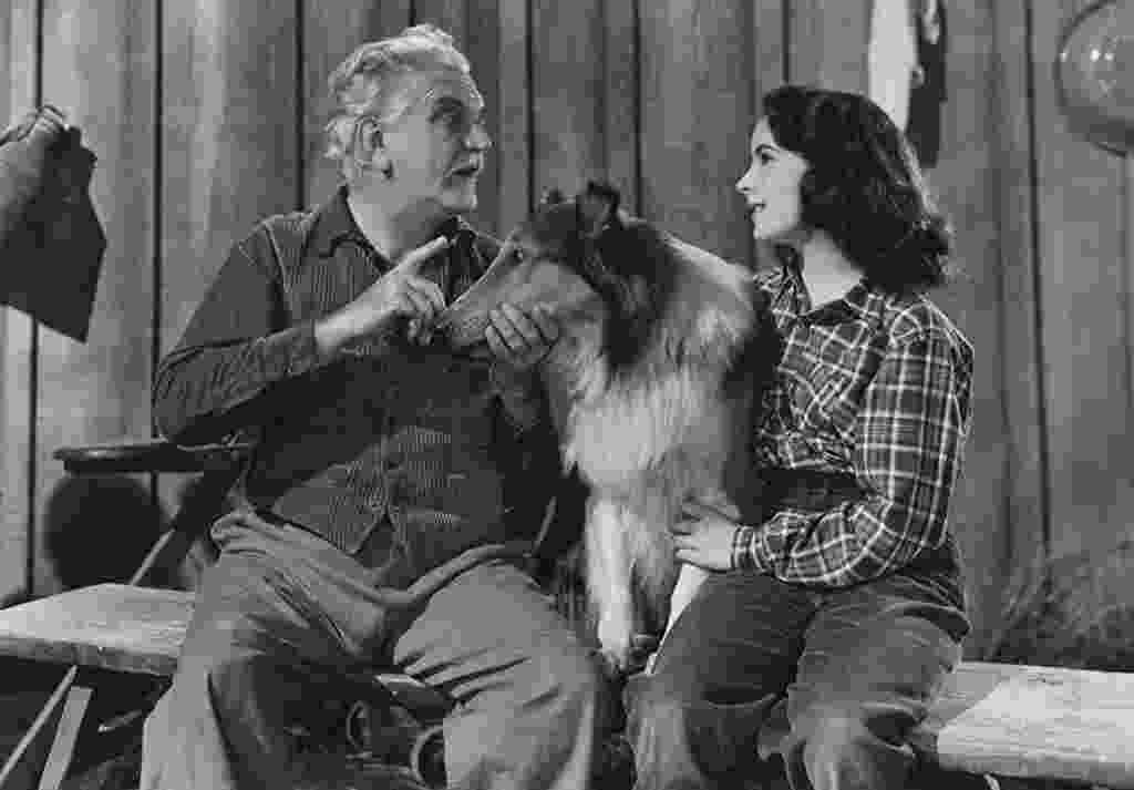 """Elizabeth Taylor, Frank Morgan e o cão Pal em cena em """"A coragem de Lassie"""" (1946) - Divulgação"""