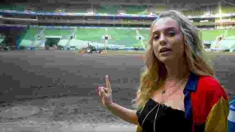 Gramado do Allianz Parque é retirado para shows do BTS no Brasil - Reprodução/YouTube