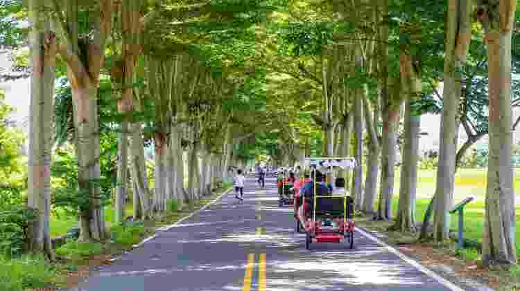 Turistas em triciclos elétricos em Luye Longtian, Taitung - Getty Images - Getty Images