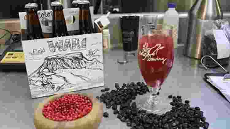 Wari, cerveja feita pelo Museu Field de História Natural com a Off Colour, de Chicago - Divulgação - Divulgação