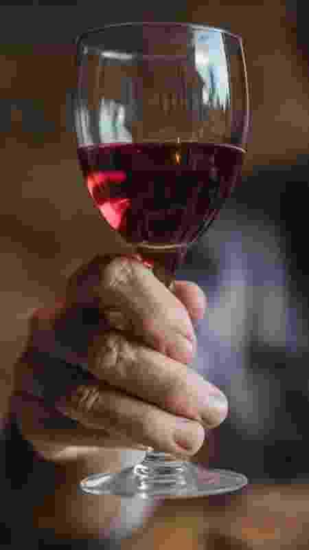 Leoninos aproveitam para fazer uma festa para si mesmo, com um bom vinho - skynesher/iStock