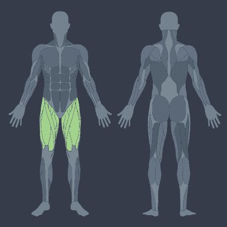 músculos quadriceps - iStock/ Arte VivaBem - iStock/ Arte VivaBem