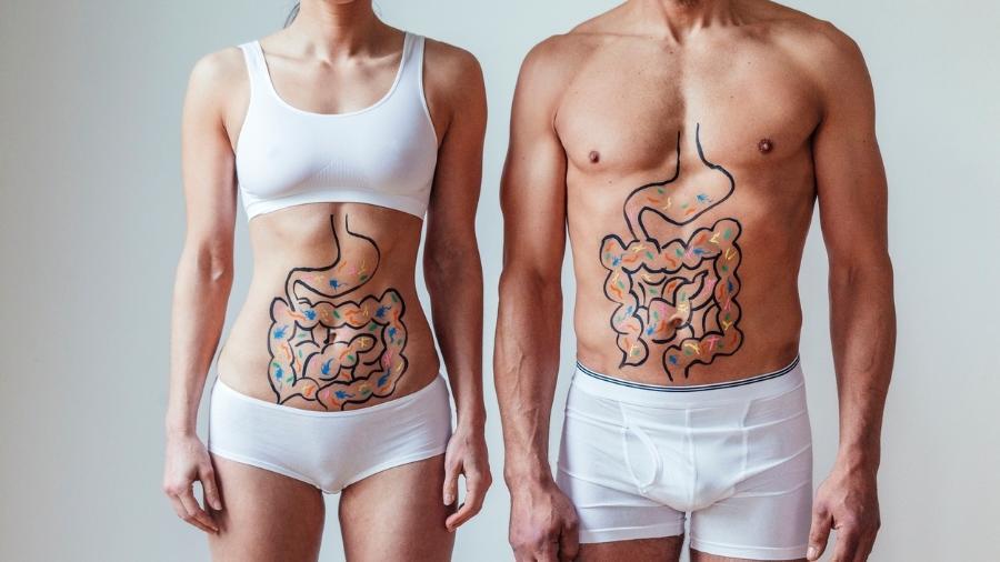 As bactérias do nosso intestino são importantes para a saúde, mas não é um simples suplemento que vai mudá-las - iStock