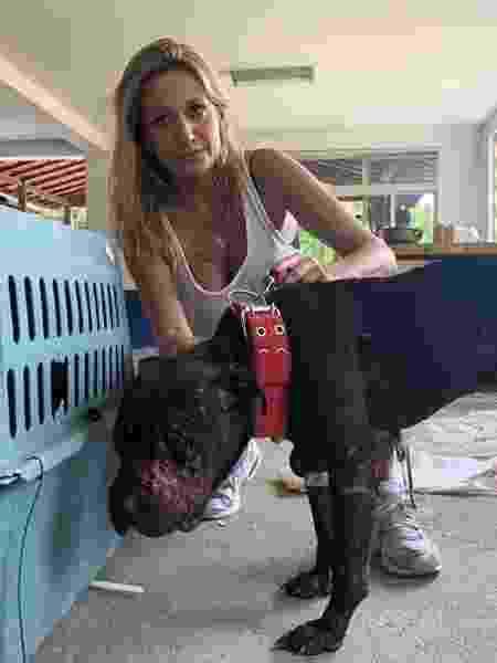 Luísa Mell, com um dos cachorros resgatados de rinhas clandestinas - Reprodução/ Instagram
