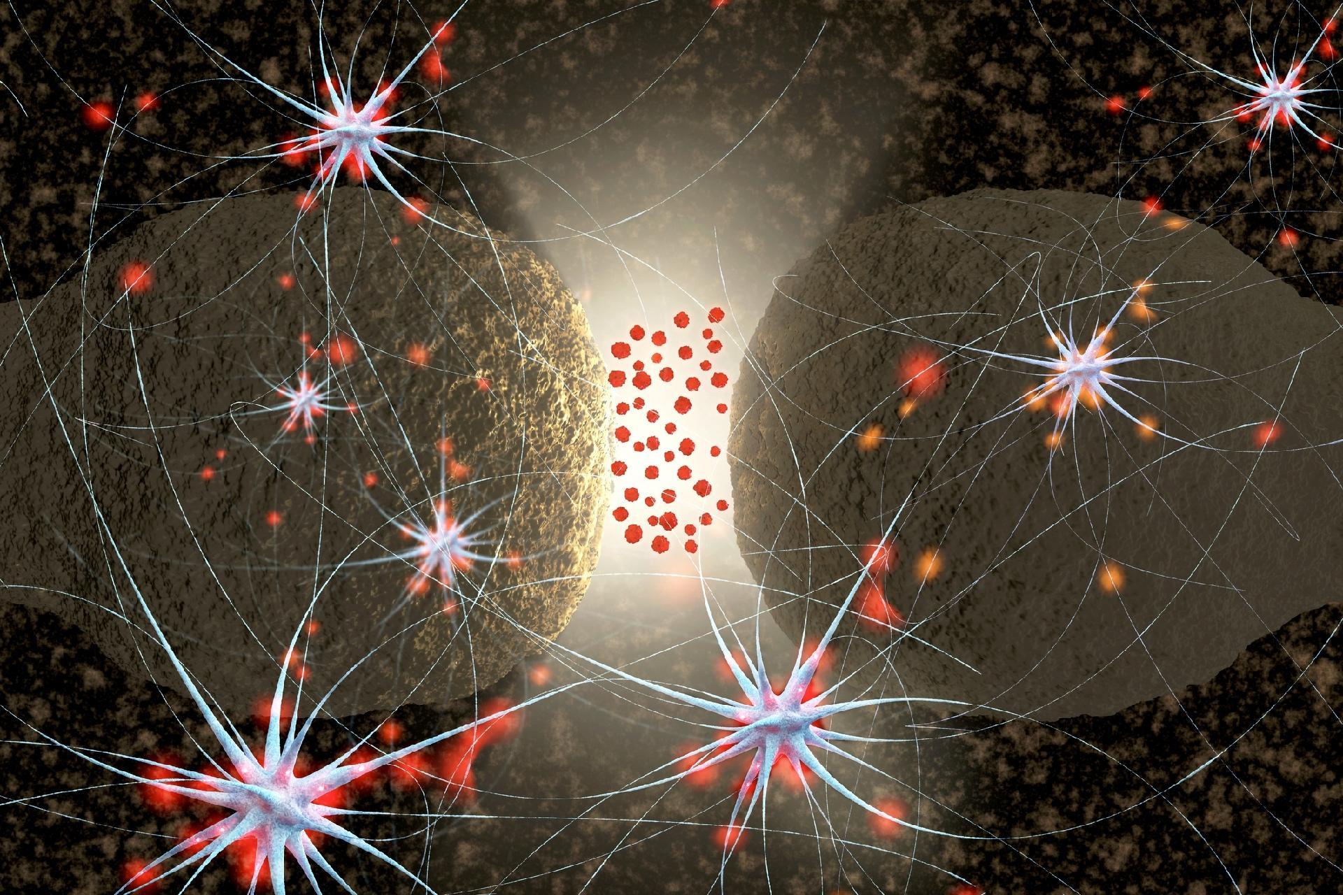 Serotonina inibe inflamação sistêmica severa como a que ocorre na sepse -  21/10/2019 - UOL VivaBem