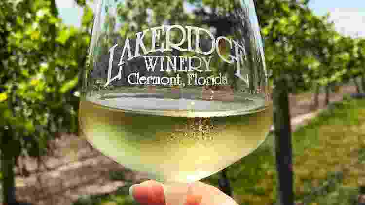 Lakeridge Winery, perto de Orlando, na Flórida - Divulgação/Visit Orlando - Divulgação/Visit Orlando