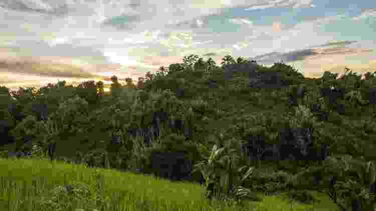 Nosy Boraha é uma ilha de atmosfera selvagem e cheia de histórias fascinantes - jalvarezg/Getty Images/iStockphoto