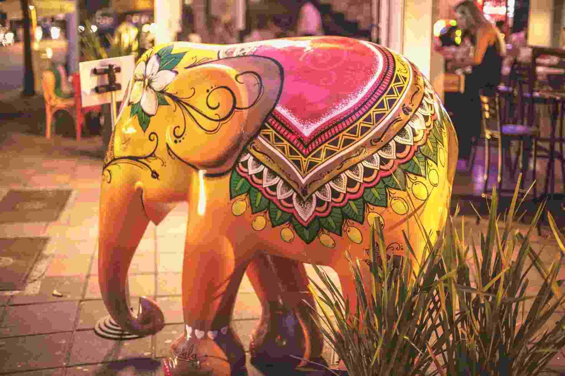 Elefante Joaquina - Elephant Parade Floripa 2016 - Divulgação