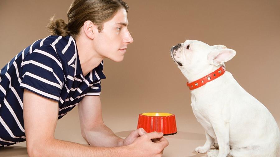 Personalidade do dono e clima da casa refletem no comportamento do cão - Getty Images