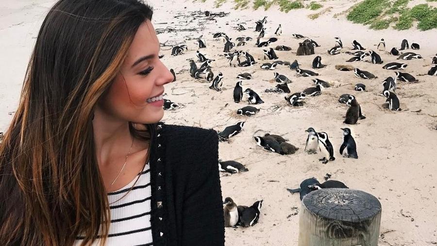 Giovanna Lancellotti posa em praia de pinguins na África do Sul - Reprodução/Instagram/gilancellotti