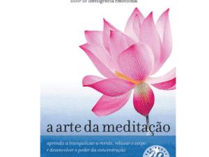arte da meditação - Divulgação - Divulgação