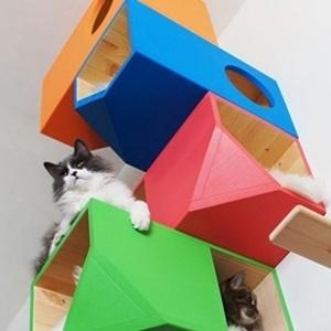 Os módulos Cat House da marca Catissa - Divulgação/ Catissa
