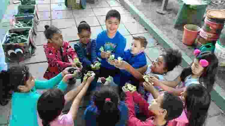Crianças participam de ações envolvendo meio ambiente dentro do projeto Tribos nas Trilhas da Cidadania - Divulgação/Parceiros Voluntários