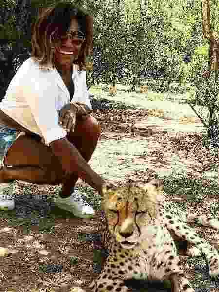 Glória Maria fez carinho em guepardo durante viagem a Johannesburgo, na África do Sul - Reprodução/Instagram