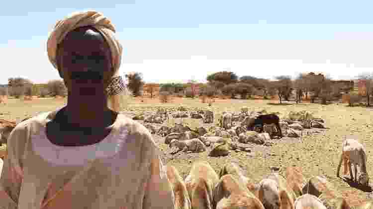 Sudão 11 - Arquivo pessoal - Arquivo pessoal