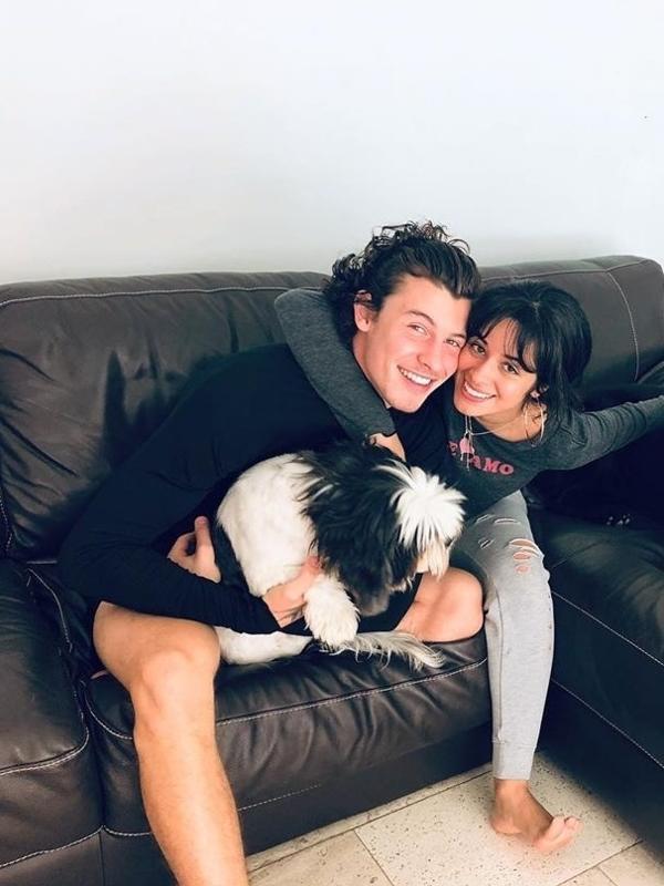 Shawn Mendes e Camila Cabello namoram desde julho de 2019