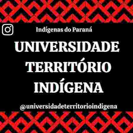 2 - Universidade Território Indígena/Reprodução - Universidade Território Indígena/Reprodução