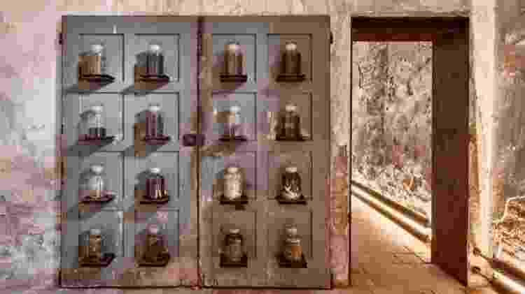 Instalação com diversos tipos de excrementos do museu - Divulgação - Divulgação