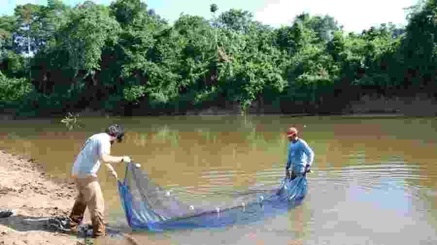 Pesquisadores preparam a rede para a coleta de peixes na Calha Norte. A região paraense é um dos tesouros da biodiversidade amazônica - Tiago Freitas