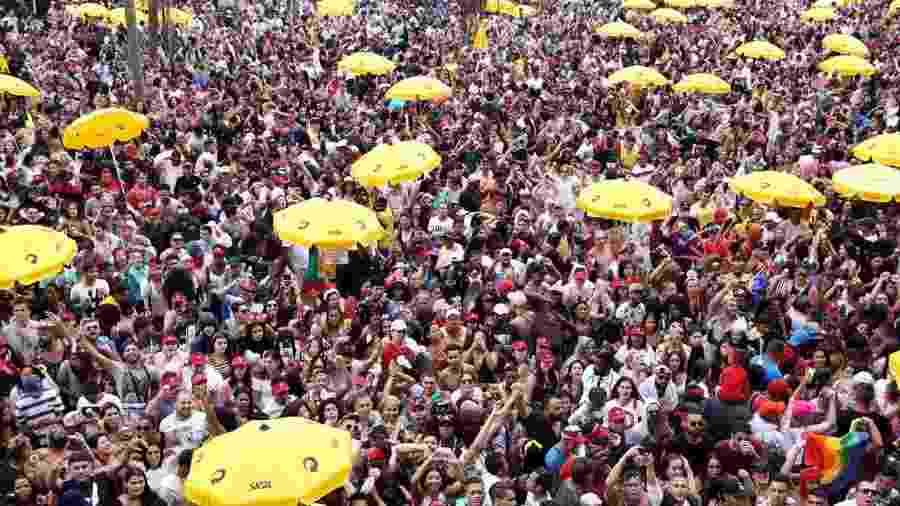 Foliões no Bloco da Preta, no Ibirapuera, zona sul de São Paulo - Gabriela Burdmann/UOL