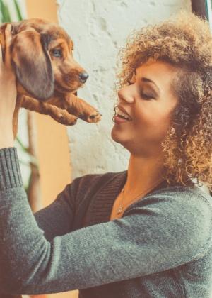 Cuidar de animais enquanto fica hospedado na casa dos dono é opção