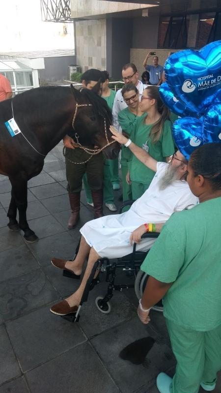 Francisco Carlos Ferreira Mena, 65, teve alta após receber a visita de seu cavalo - Thais Pedrazzi/Divulgação
