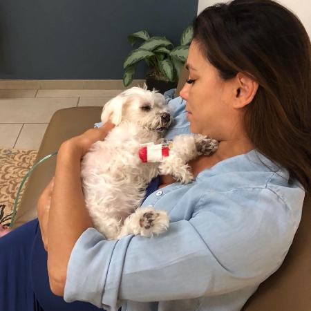 Eva Longoria e o cachorrinho, Jinxy - Instagram