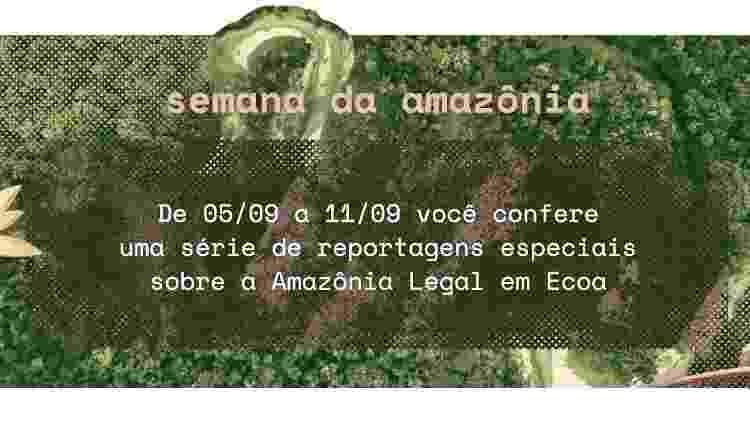 Arte amazônia - Arte Uol - Arte Uol