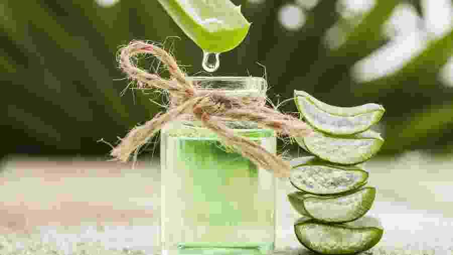 Babosa é benéfica por ter propriedades extremamente hidratantes - iStock