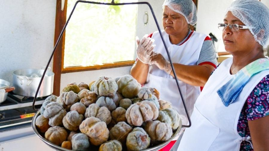 Associação de Mulheres Extrativistas do Porto da Manga (MS), comunidade ribeirinha e tradicional no Pantanal. - Divulgação/ONG Ecoa
