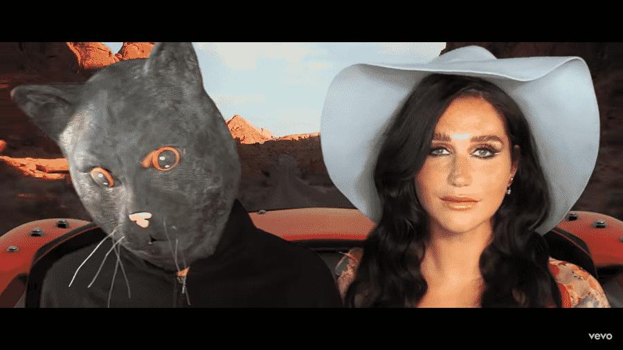 No vídeo gravado no celular de Kesha, o gato Mr. Peeps é interpretado por Brad, namorado da cantora - Reprodução