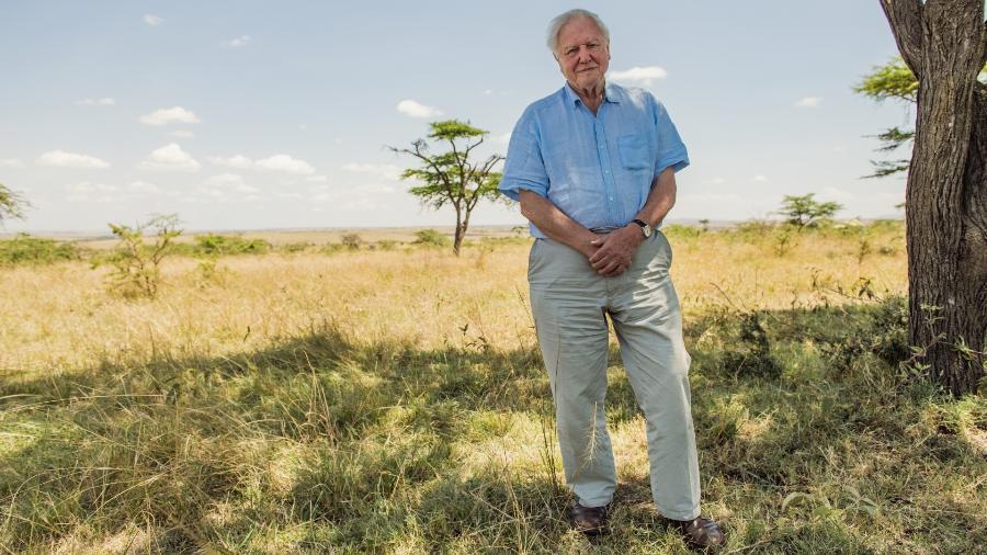 """O ambientalista David Attenborough no documentário """"David Attenborough e Nosso Planeta"""" - Divulgação/Netflix"""