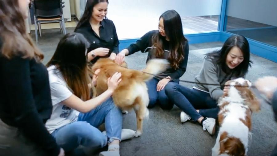 Estudantes durante a sessão de terapia - Reprodução