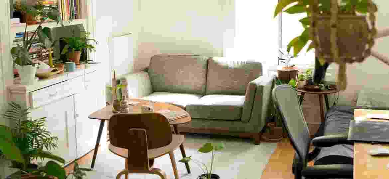 Plantas, adesivos e mais recursos ajudam a embelezar a casa sem gastar muito - Unsplash