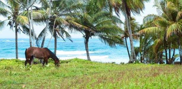 Corn Island e Little Corn Island são ótimas opções para as férias - Getty Images