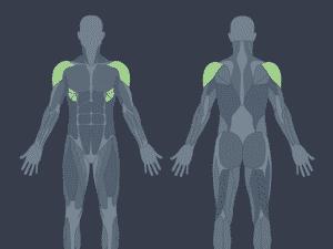 Músculos ativados na elevação frontal - Micaele Martins/UOL - Micaele Martins/UOL