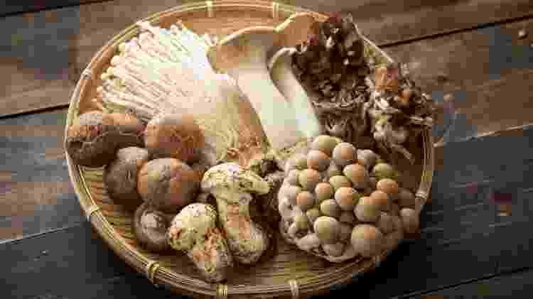 Cogumelos - iStock - iStock