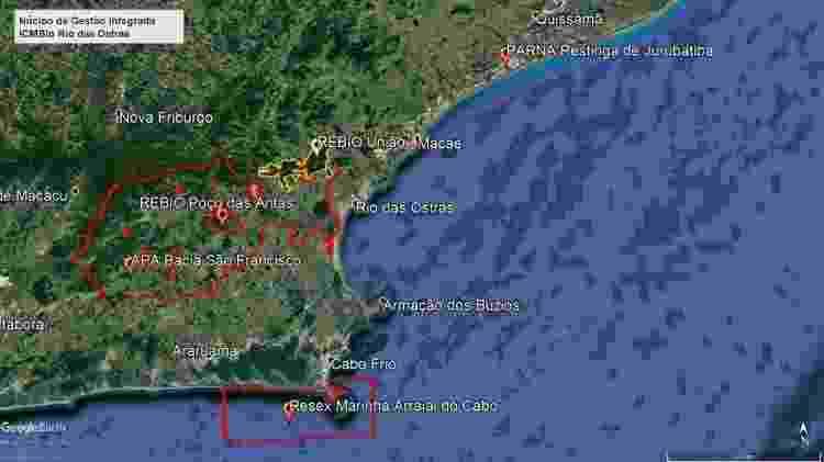 Projeto do ICMBio de unificação de áreas onde estão o Mico-leão-dourado - Reprodução - Reprodução