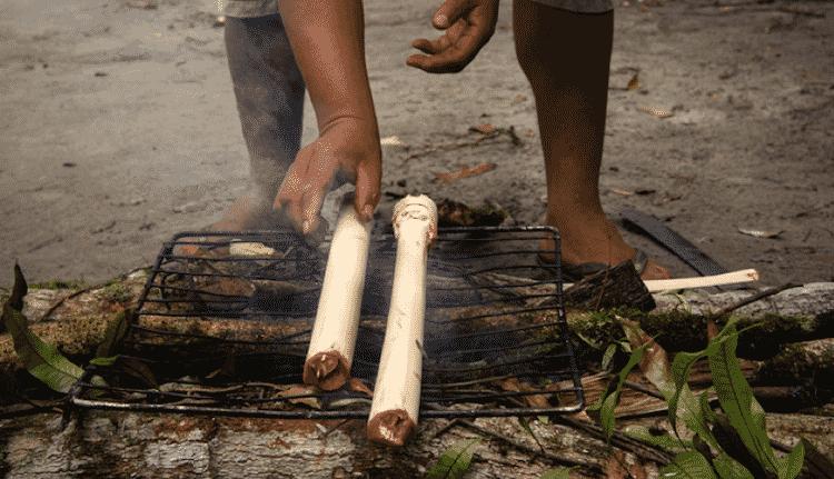 Os guarani do litoral paulista preferem consumir o palmito de juçara cru (com mel) ou assado no moquém - Xavier Bartaburu - Xavier Bartaburu