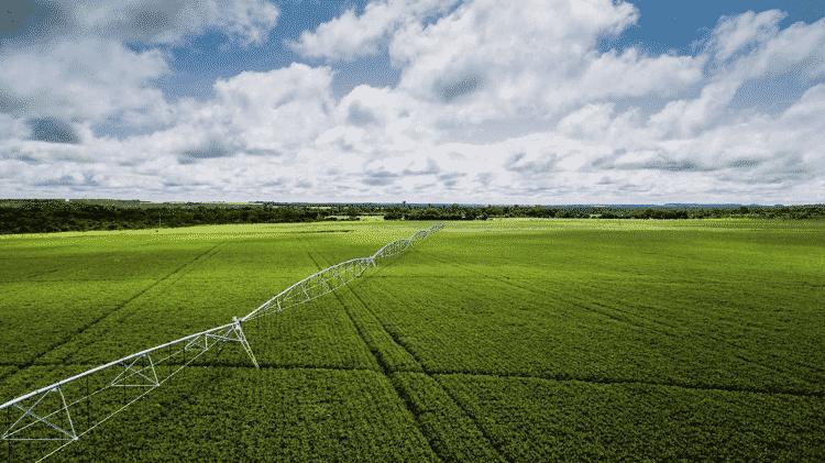 Cultivo de soja no oeste baiano: a região conhecida como Matopiba (formada por Maranhão, Tocantins, Piauí e Bahia) é tida como a mais nova fronteira agrícola do país - Fernanda Ligabue/Greenpeace - Fernanda Ligabue/Greenpeace