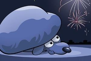 Cães e gatos sofrem com o barulho dos fogos de artifício