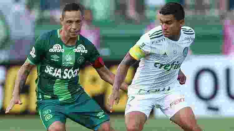 Divulgação/Cesar Greco/Ag. Palmeiras